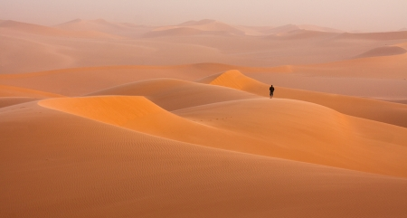 Elijah desert